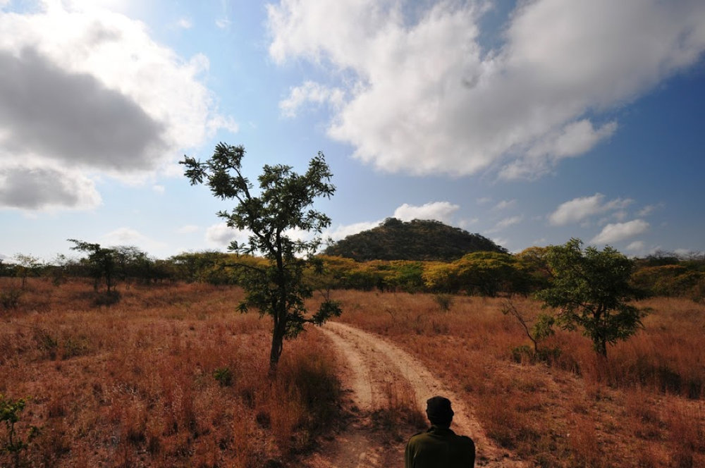 Hunt Zimabawe SE108.JPG
