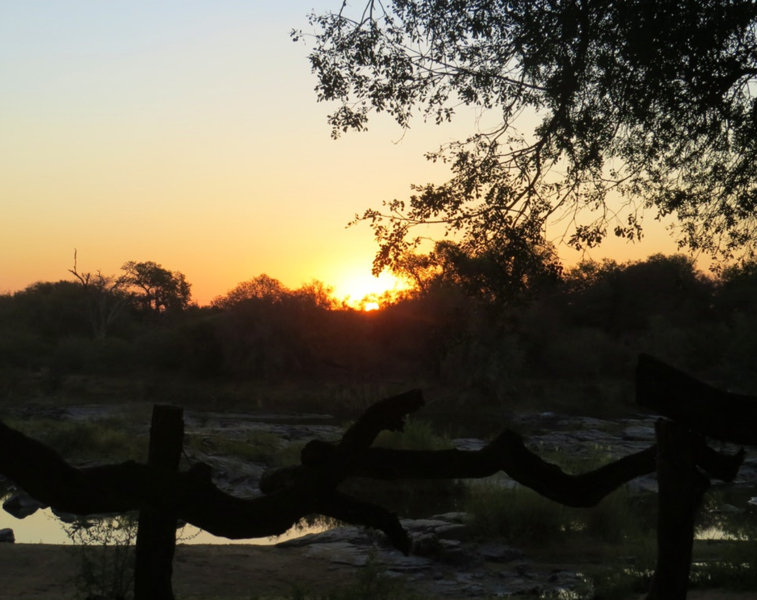 SA Limpopo Camp5.jpg