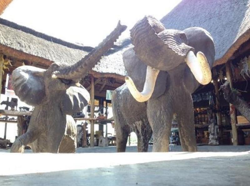 Elephant River Safari1.jpg
