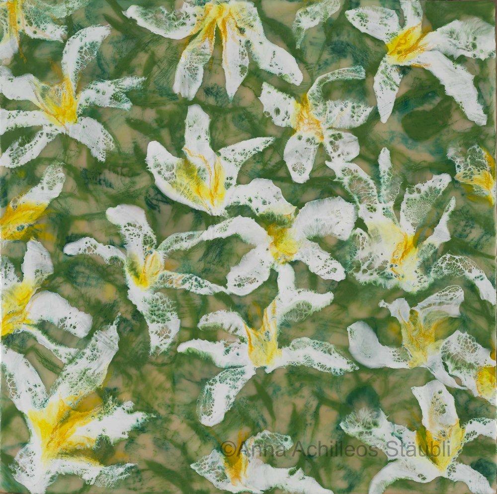 Sensations Imprimées, 2017 - Flora Im Quadrat