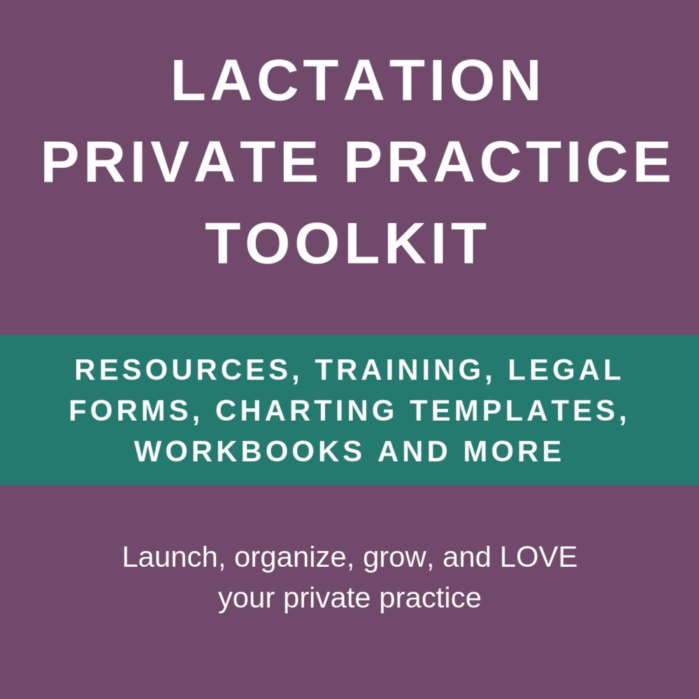 ibclc private practice essential toolkit paperless private