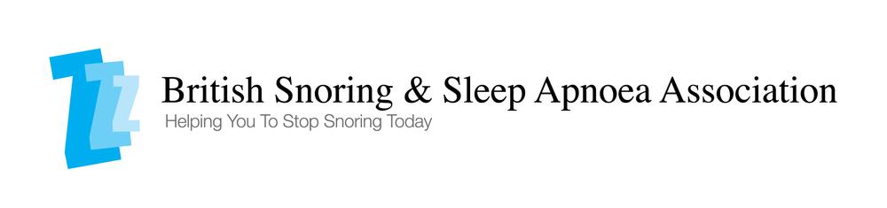 BSSAA_ZZZ_Logo.png
