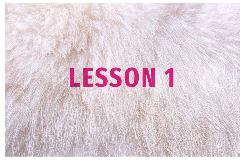 SoA_Lesson_Button1.png