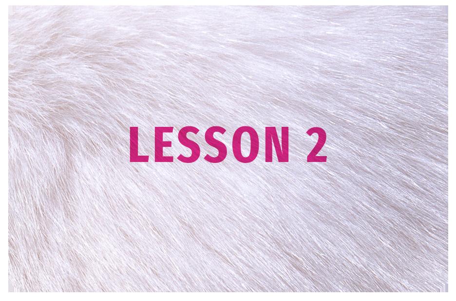 SoA_Lesson_Button2.png