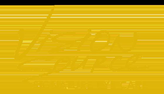 vision source.png
