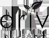 Driv_logo.png
