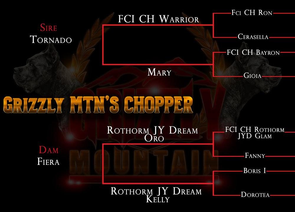 Grizzly MTN'S CHOPPER.jpg