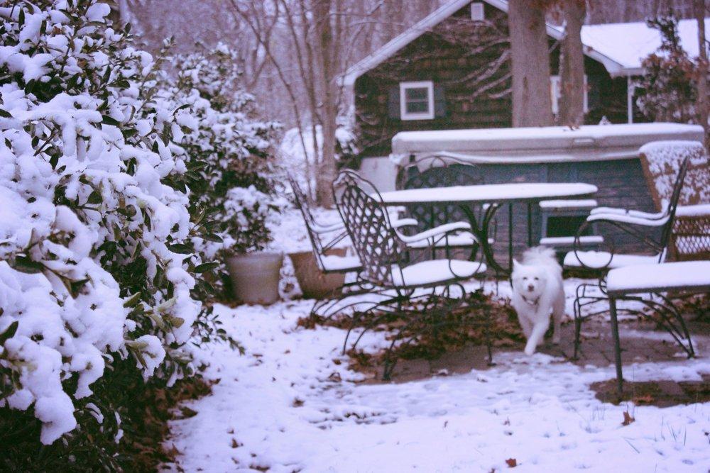 Zeba/First Snow