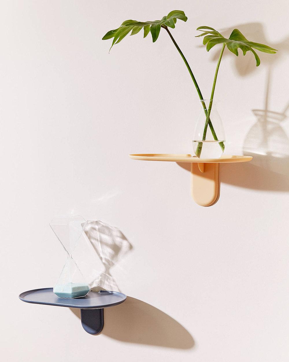 Seed Shelf