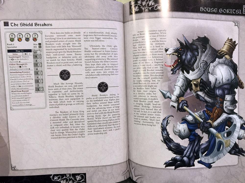wok_book1.jpg