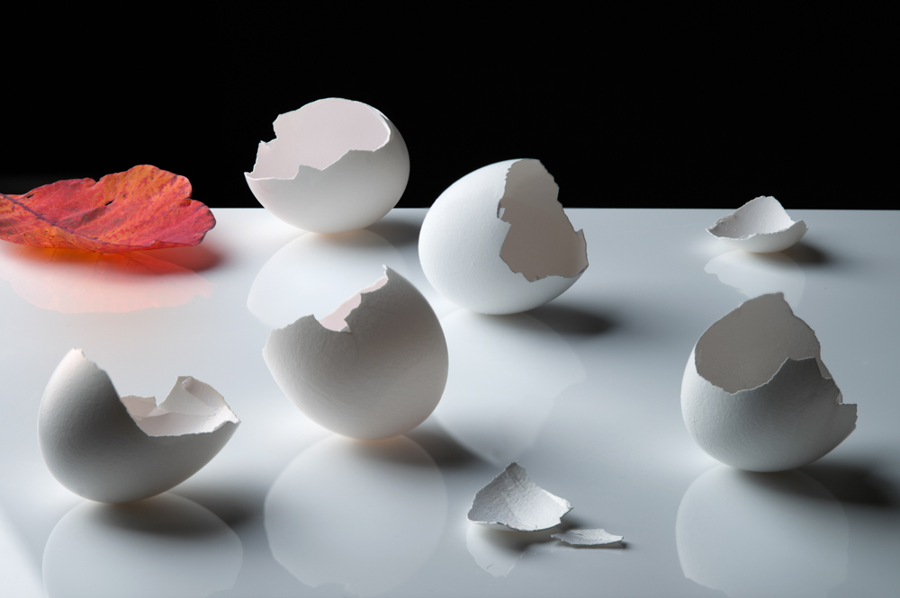 Eggshells on White with Orange Leaf (Vanitas)