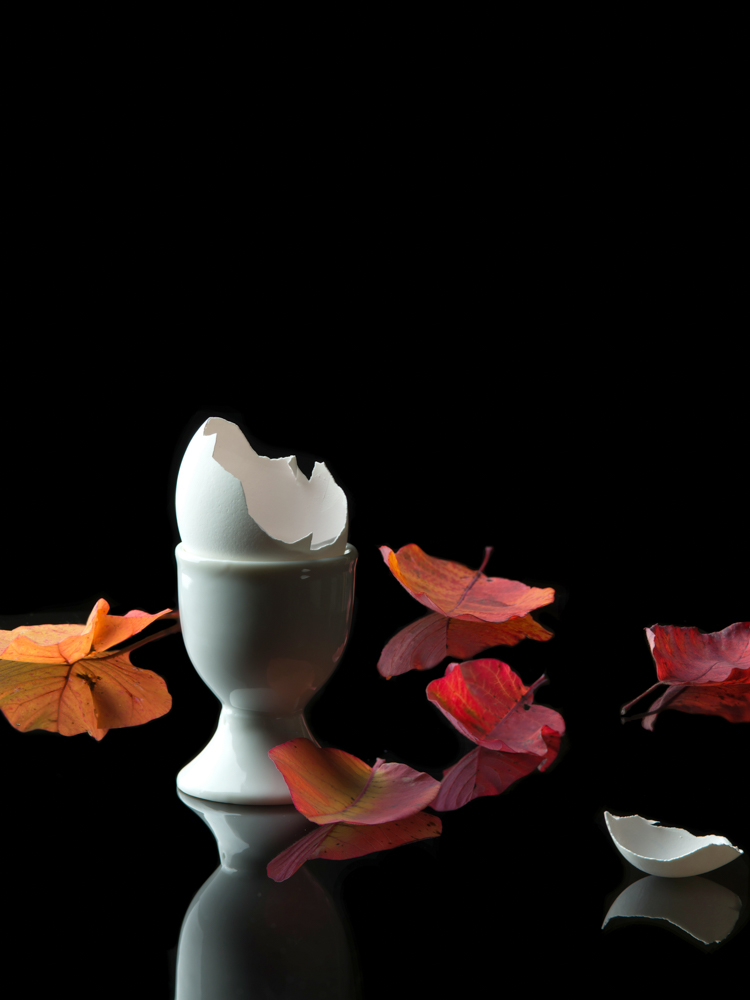 Egg Cup with Leaves (Vanitas)