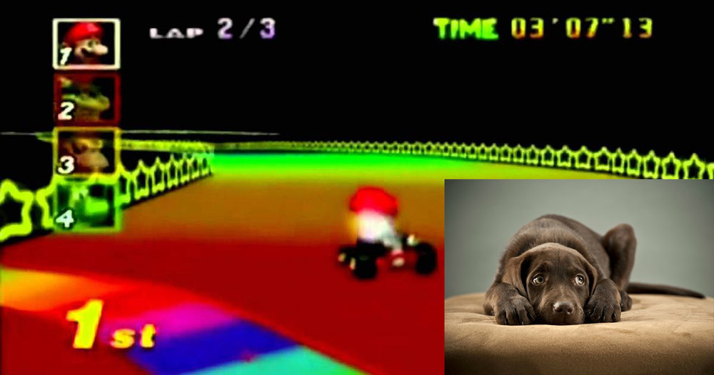 Rainbow Road and Dog.jpg