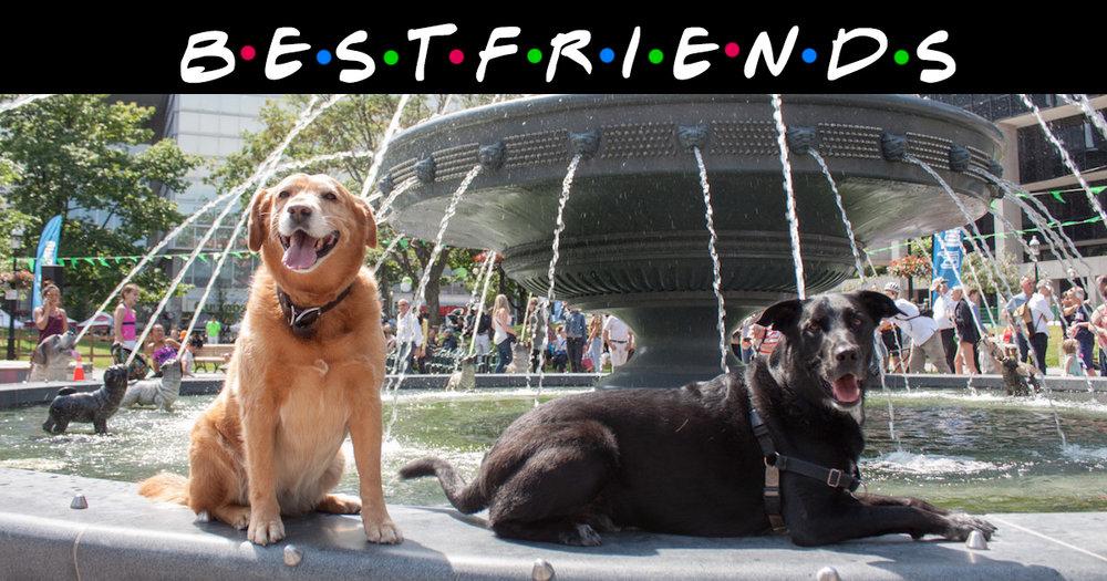 best friends.jpg