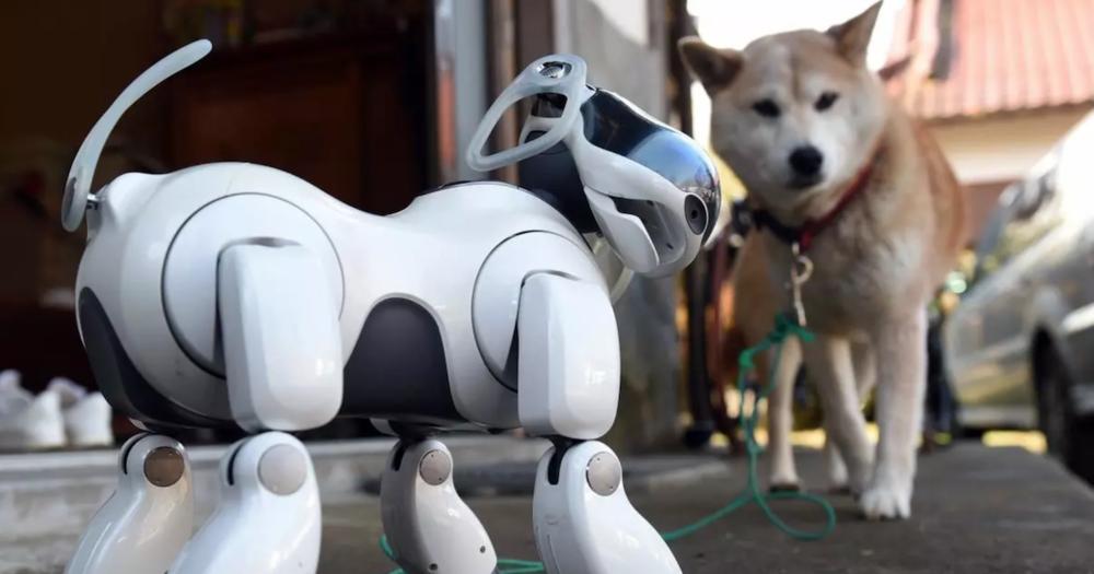 Robot Dog.png