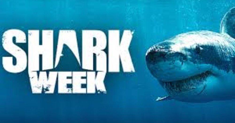 sharkweekjpg.jpg