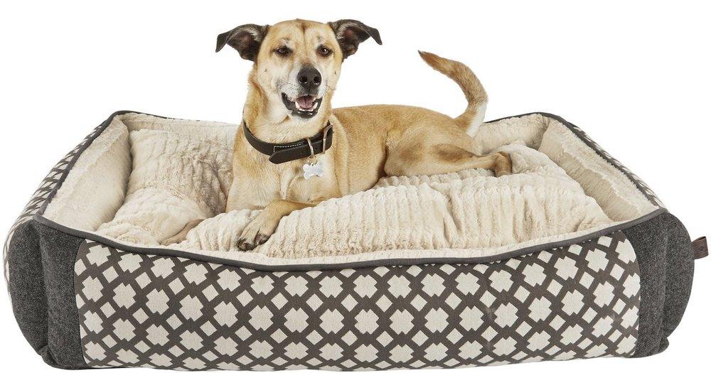 doggie bed.jpg