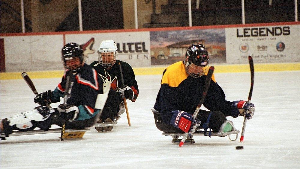 sled ice hockey.JPG