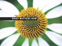 what-matters-now_Page_01