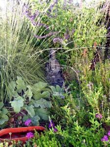 budda-garden