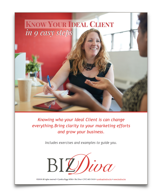 Know Your Ideal Client in 9 Easy Steps_Biz Diva