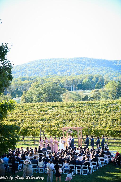 virginia_vineyard_wedding_021.jpg