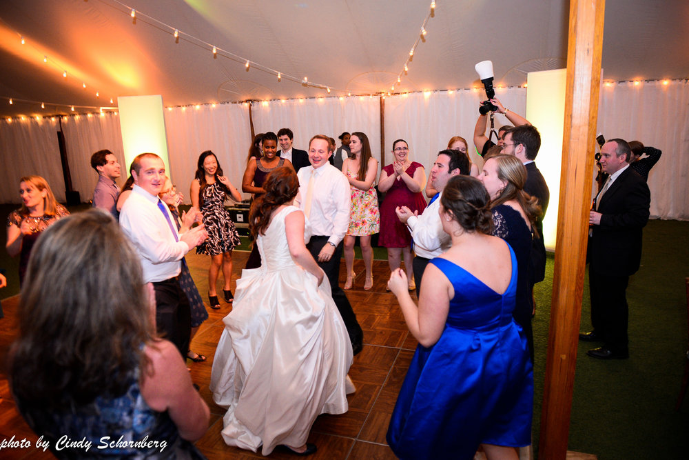 virginia_vineyard_wedding_017.jpg