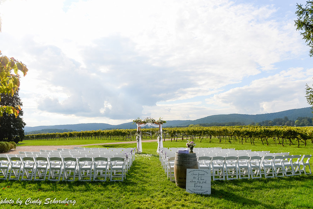 vineyard_weddings_Charlottesville_Virginia_001 (1).jpg