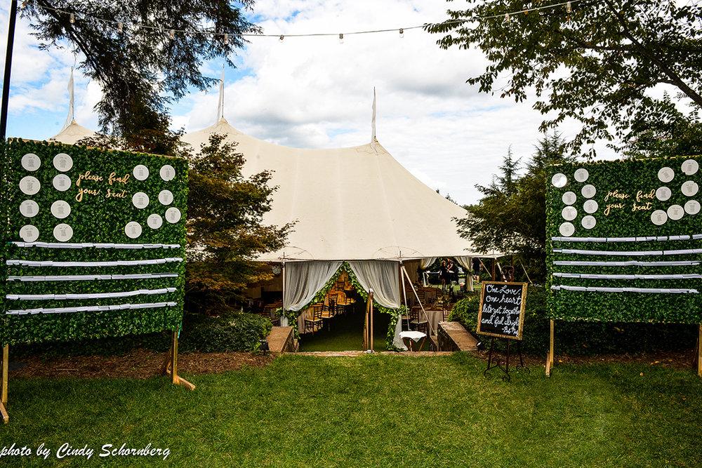 vineyard_weddings_Charlottesville_Virginia_001.jpg