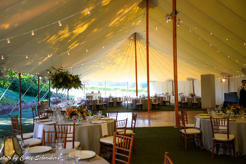 vineyard_weddings_Charlottesville_Virginia_003.jpg