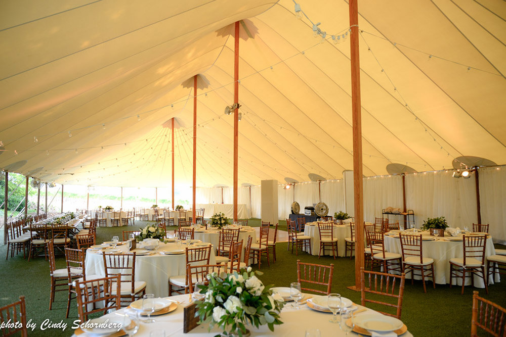 vineyard_weddings_Charlottesville_Virginia_010.jpg
