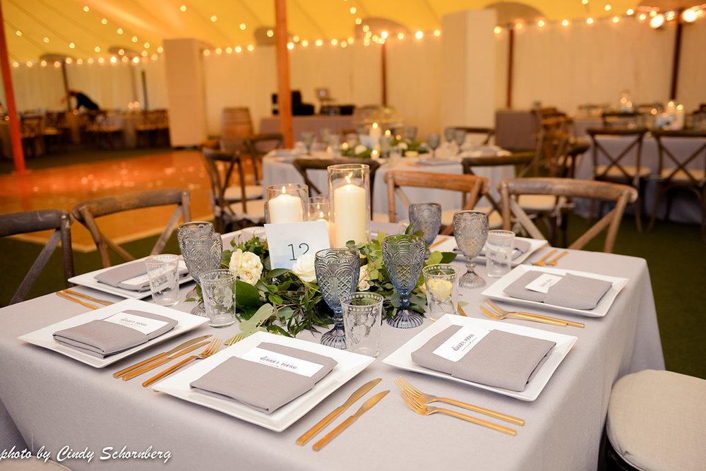 vineyard_weddings_Charlottesville_Virginia_010.jpg
