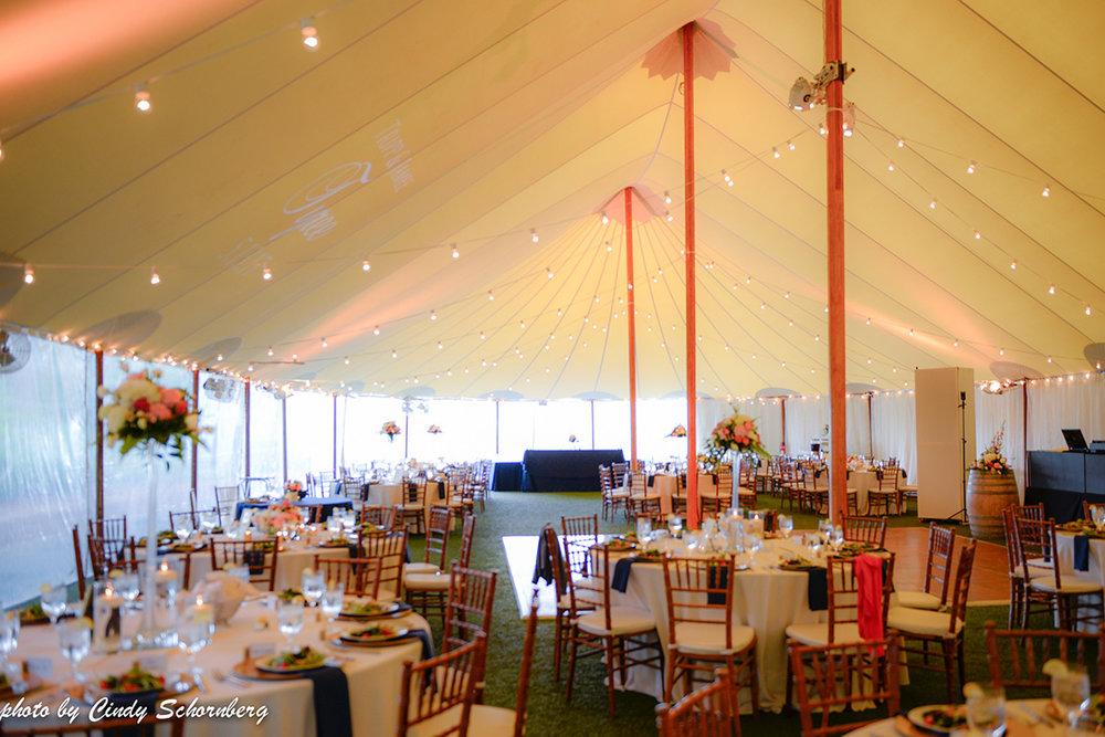vineyard_weddings_Charlottesville_Virginia_018.jpg