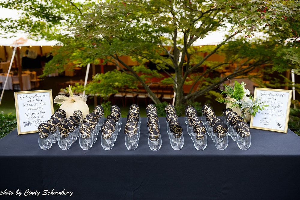 virginia_vineyard_wedding_03.jpg