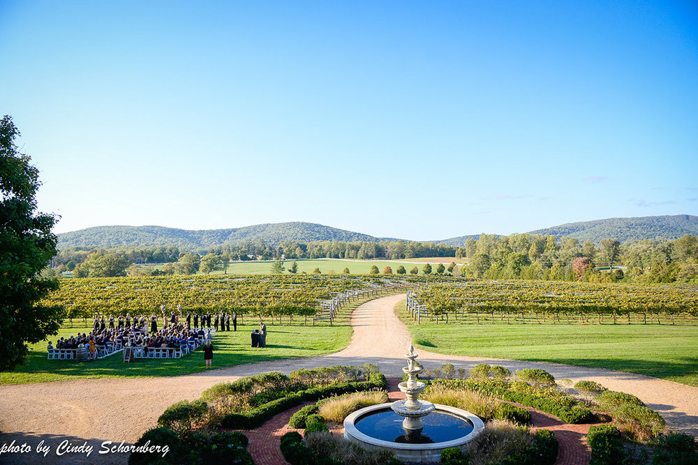 virginia_vineyard_wedding07.jpg
