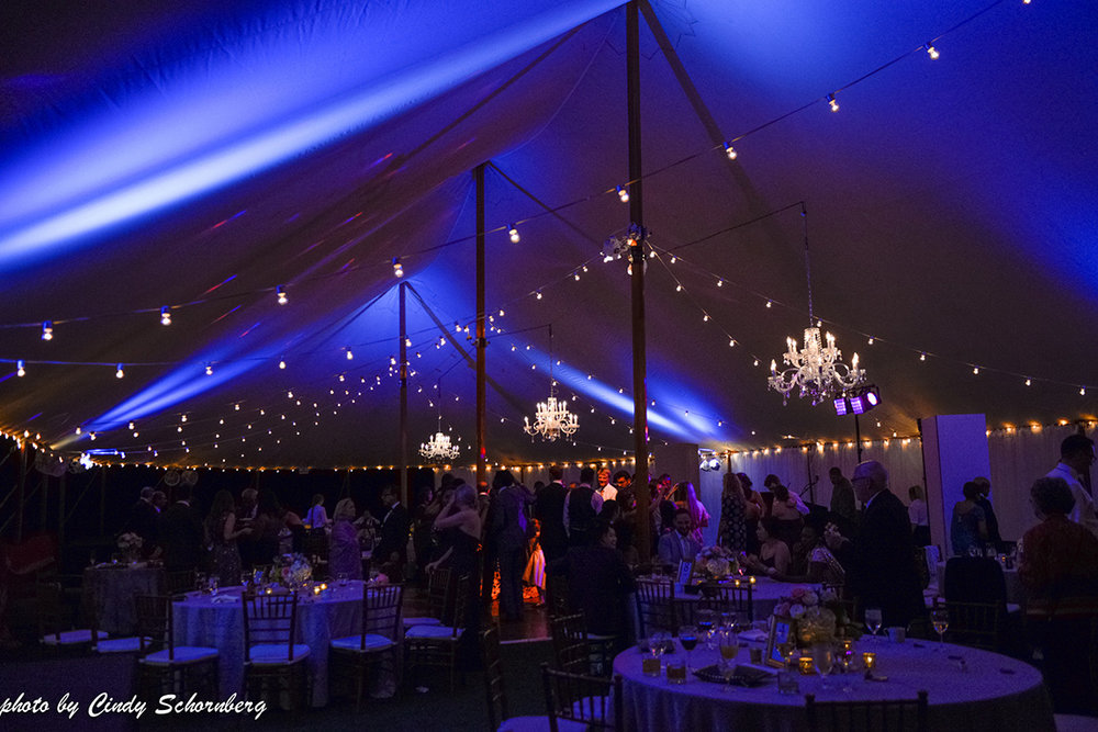 virginia_vineyard_wedding19.jpg