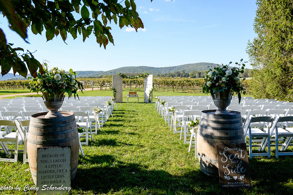 virginia_vineyard_wedding_003.jpg