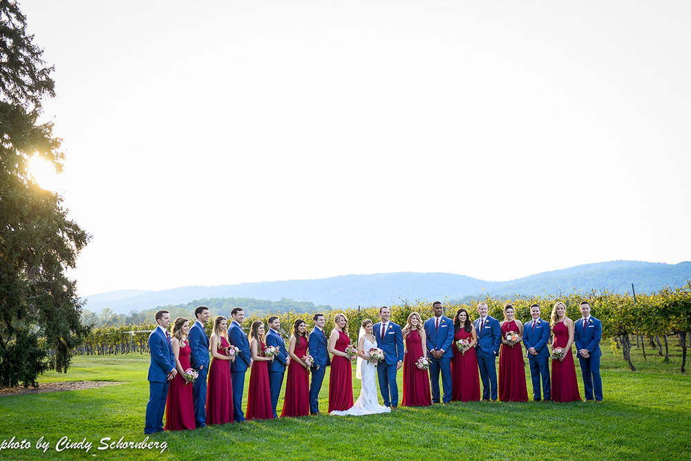 virginia_vineyard_wedding_011.jpg
