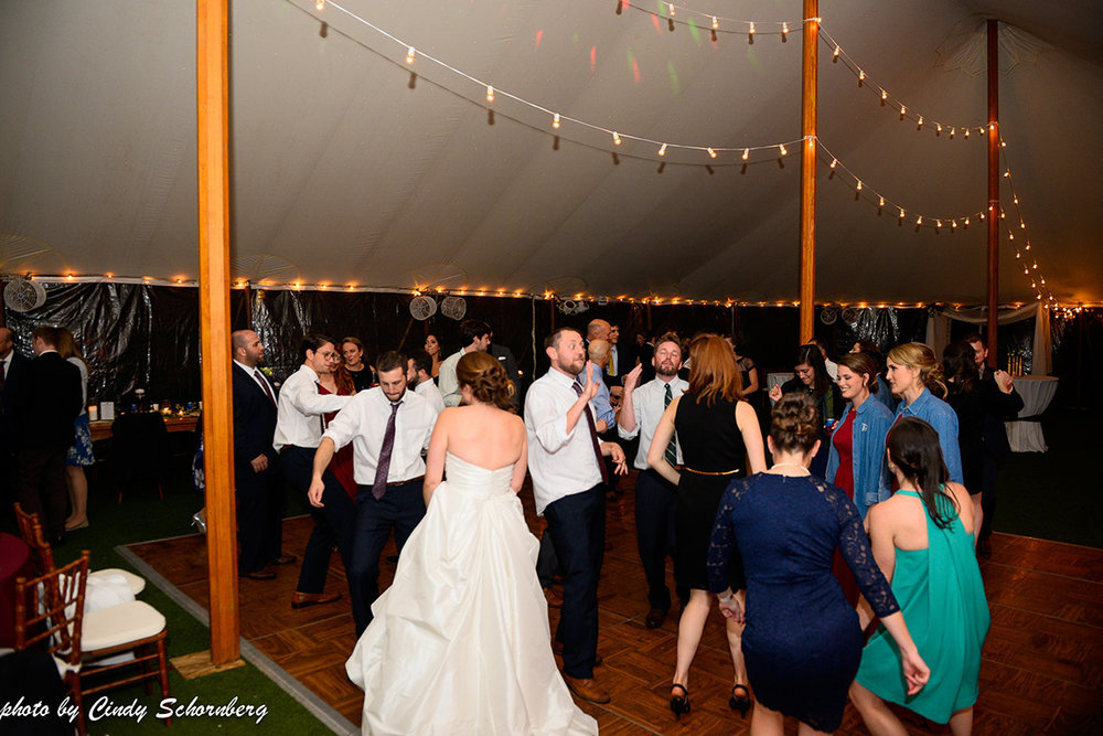 Virginia_Vineyard_Wedding_015.jpg