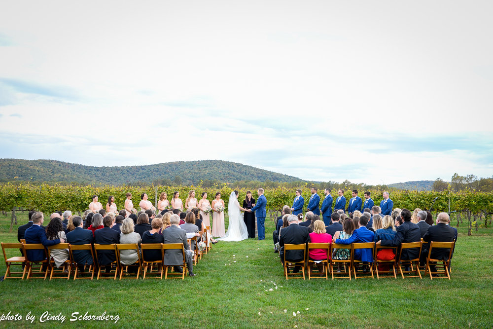 vineyard_weddings_Charlottesville_Virginia_004.jpg