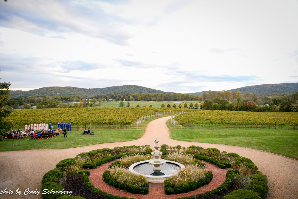 vineyard_weddings_Charlottesville_Virginia_005.jpg