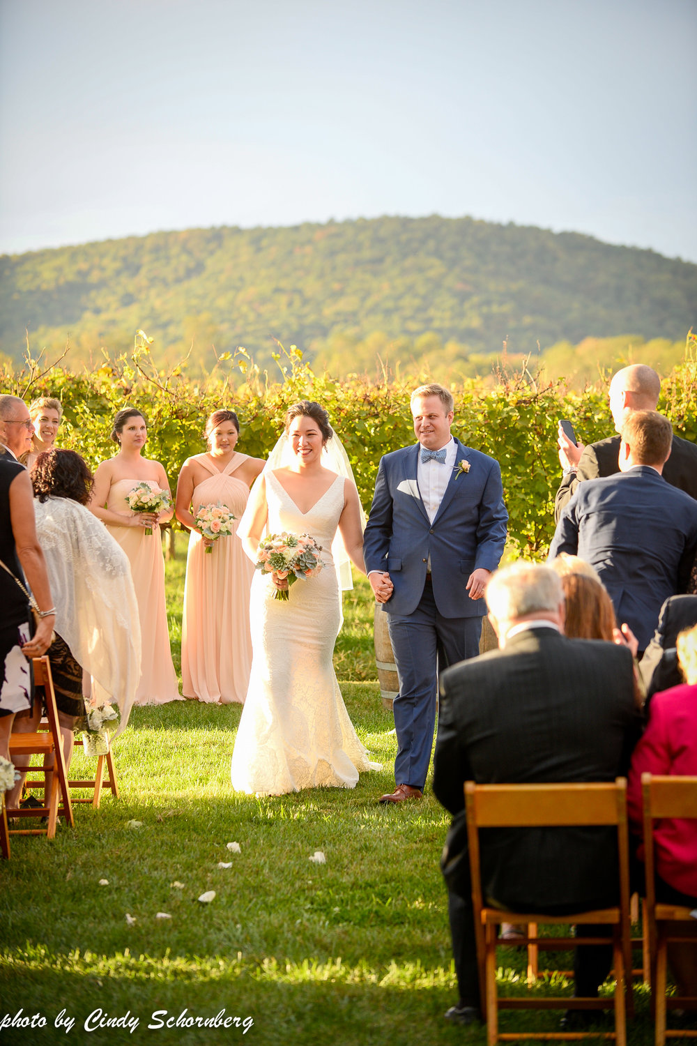vineyard_weddings_Charlottesville_Virginia_010 (1).jpg