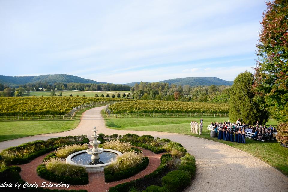 vineyard_weddings_Charlottesville_Virginia_005.jpg
