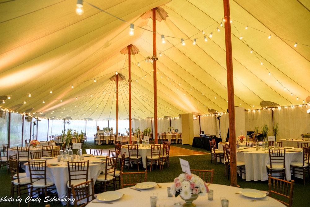 vineyard_weddings_Charlottesville_Virginia_004.jpg