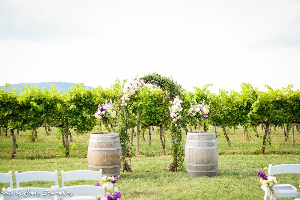 vineyard_weddings_Charlottesville_Virginia_003.jpg