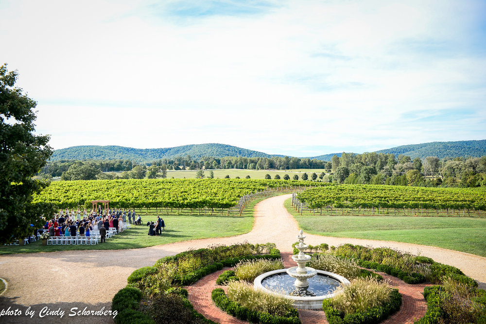vineyard_weddings_Charlottesville_Virginia_006.jpg