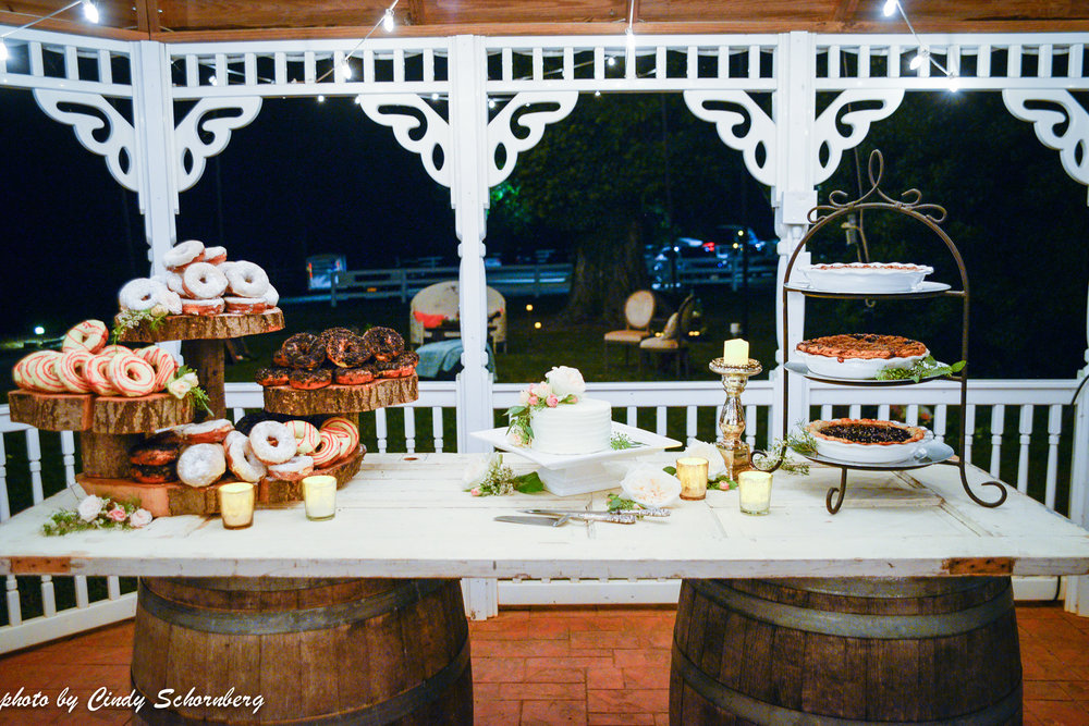 vineyard_weddings_Charlottesville_Virginia_023.jpg