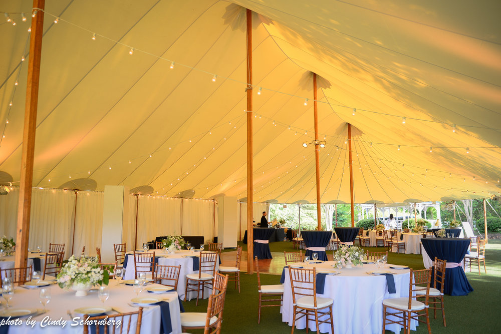 charlottesville vineyard wedding