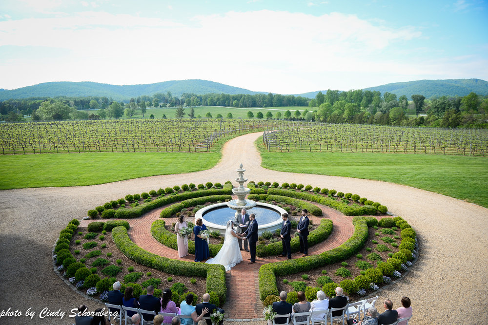 charlottesville vineyard wedding 3