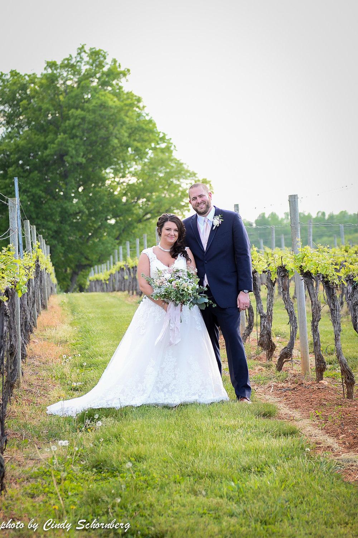 virginia vineyard wedding 5